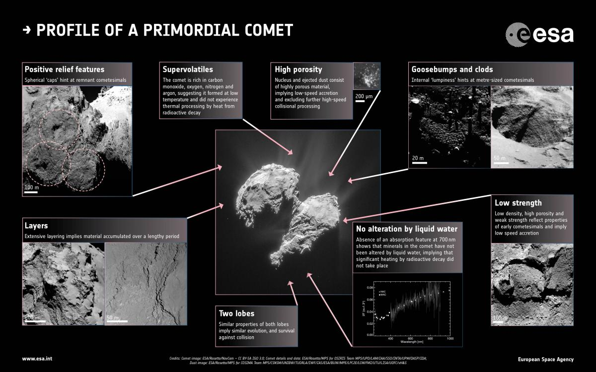 Profile_of_a_primordial_comet.jpg