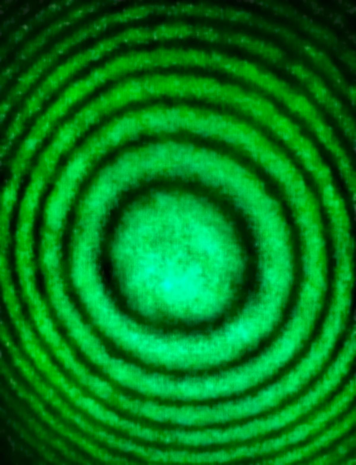 Fringes 536 nm green laser.jpg