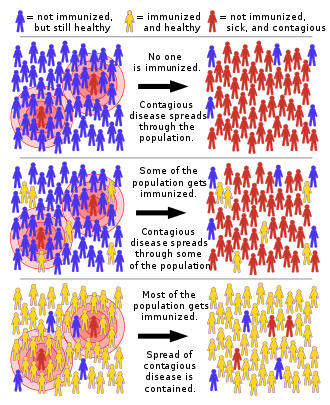 330px-Herd_immunity.svg.png